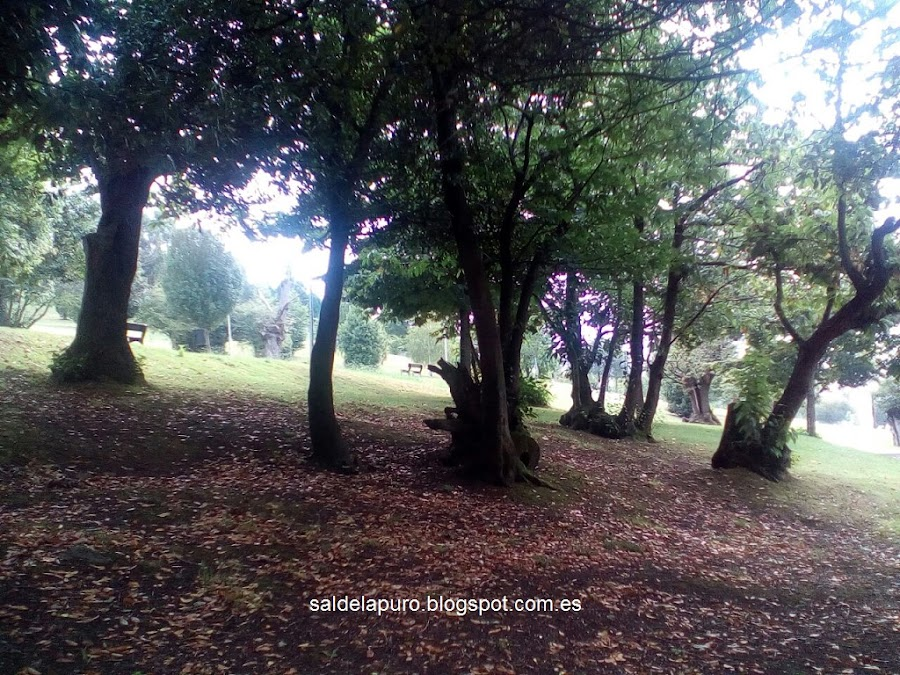 otoño-gijon-parque-pericones