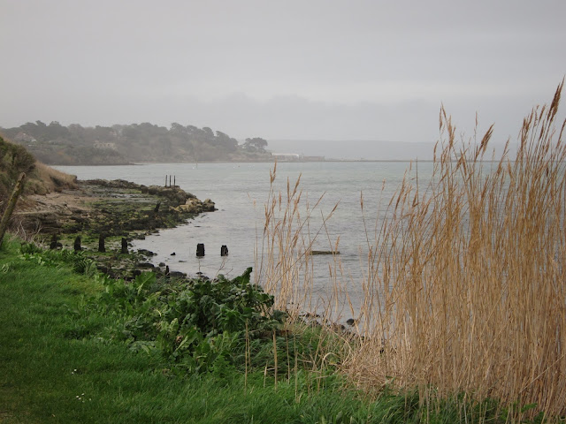 Sandsfoot castle in background, remains of torpedo warning mid-view, reeds in foreground.
