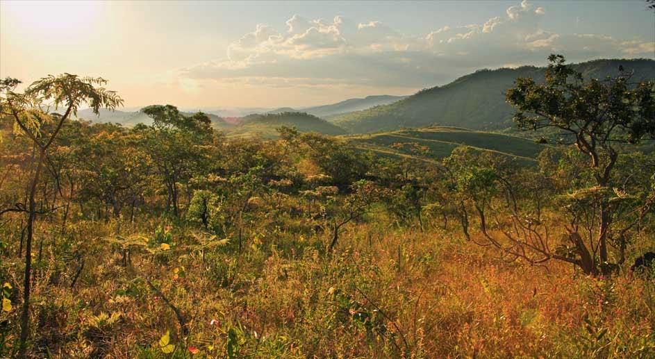 Reserva Natural Serra do Tombador, Fundação boticário de proteção a natureza, RPPN, Unidade de conservação, conservação