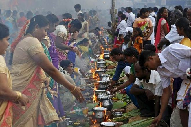 Pongal 2019: All you need to know about Makara Sankranthi