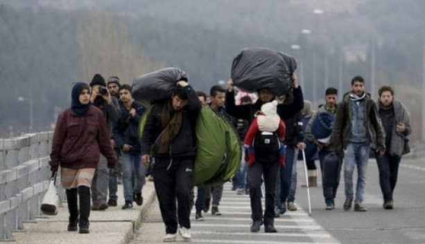 Dutch government: halve of immigrants caught are Albanians