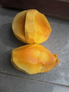 kandungan dan khasiat buah mangga segar