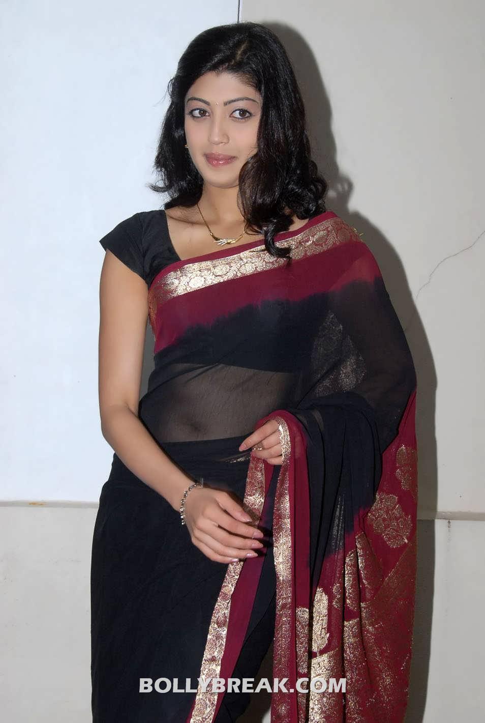 Transparent Saree: Pranitha In Black Transparent Saree