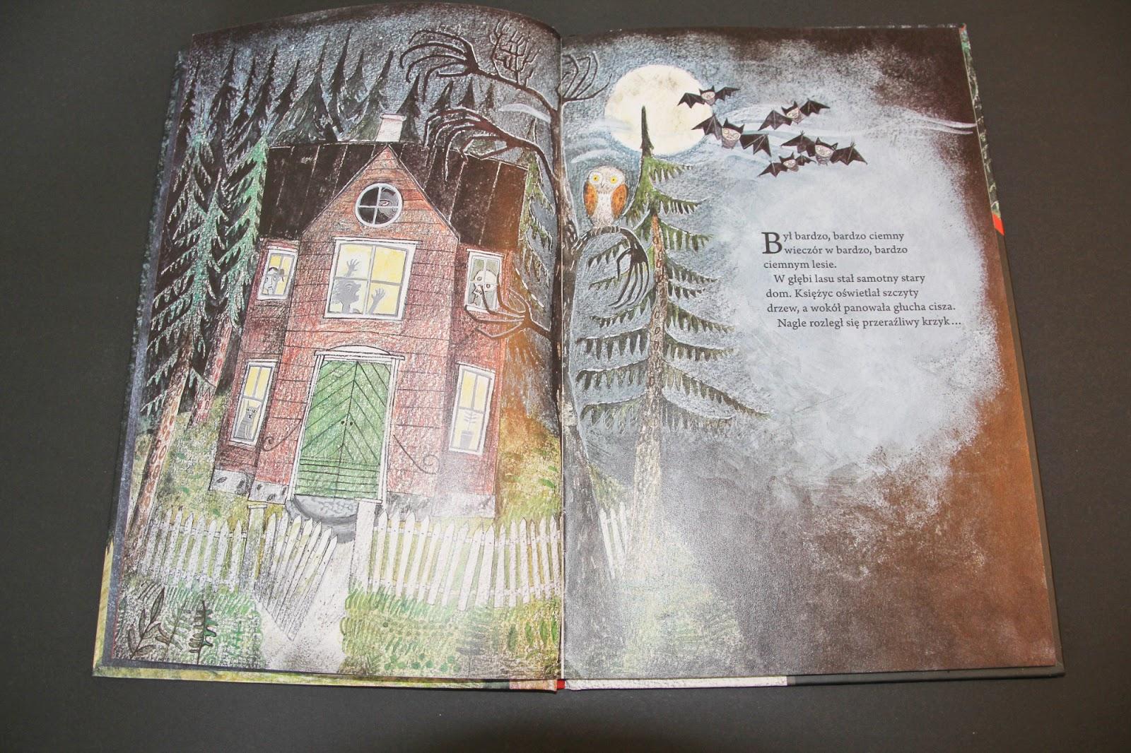 """horror dla dzieci, picture book """"O duchu, który się bał"""" Sanna Töringe, Zakamarki"""