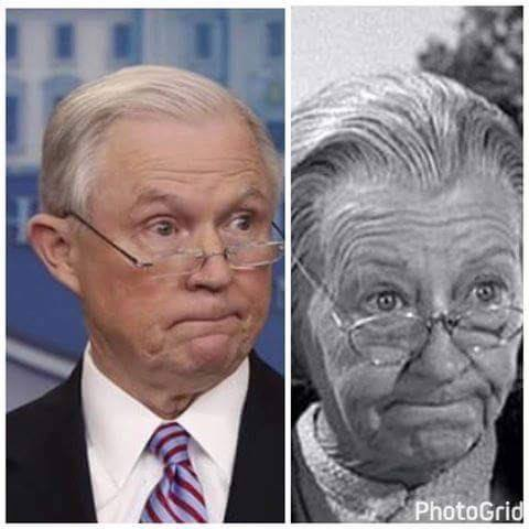 Image result for jeff sessions charlie brown