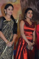 Pichuva Kaththi Tamil Movie Audio Launch Stills  0034.jpg