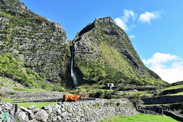 Cascada Poço do Bacalhau, isla de Flores (Azores)