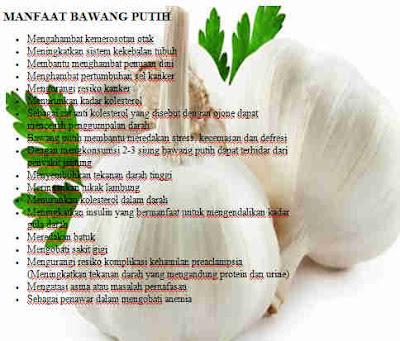 Manfaat bawang puith | khasiat bawang putih untuk kesehatan