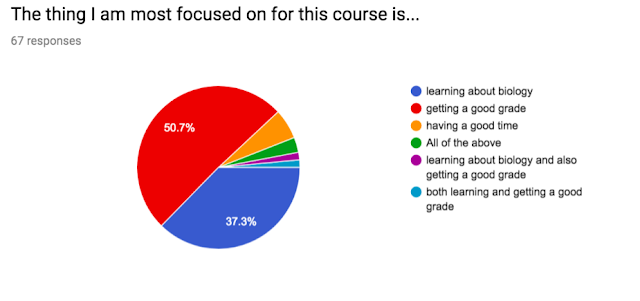 Survey results of 67 students. Half said they are most focused on getting a good grade. Another 40% are focused on learning and on getting a good grade.