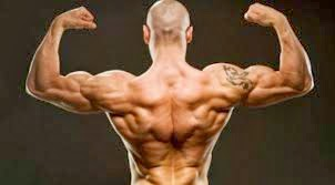 lifting weights for that perfect vtaper back  good life