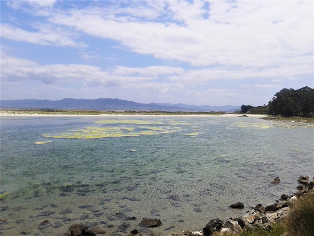 Laguna salada de Islas Cíes