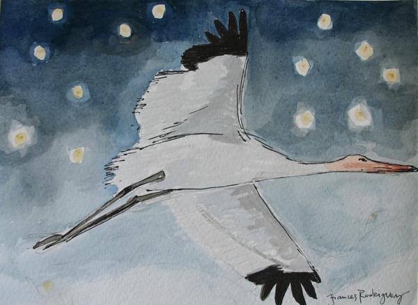 Frances Rodriguez, Flying Stork