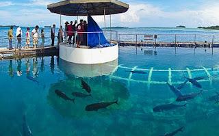 http://www.teluklove.com/2017/04/destinasti-objek-wisata-pulau-putri-di.html