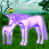 Games2Rule Unicorn Fantasy Forest Escape