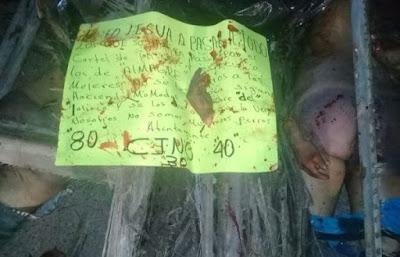 borderland beat veracruz sayula de alemán four mutilated bodies