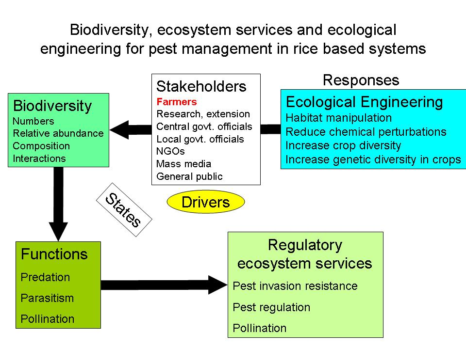 ... | Green Infrastructure, Ecosystem Services, and Human Health | HTML