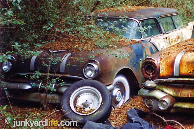 Two rare, 1955-1956 Pontiac Safari, two-door, wagons were located in the Alabama woods.