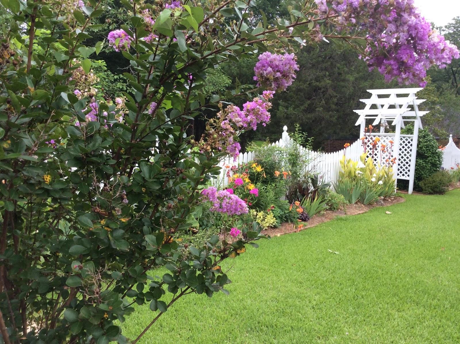 Winston Web News Winston County Master Gardeners Yard Of The
