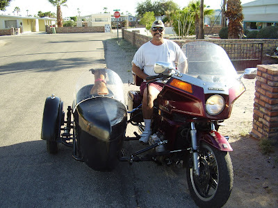 Gold Wing GL 1000 or 1100 w/sidecar? | Adventure Rider