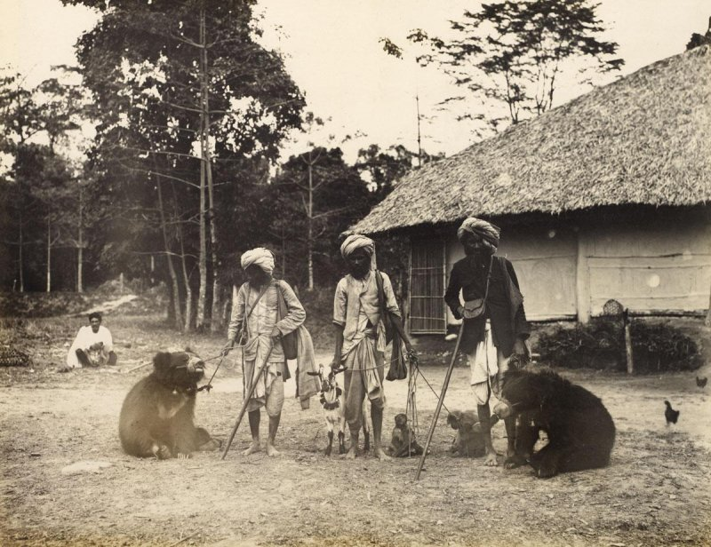 View of three men with two bears, a goat and two monkeys - Date unknown