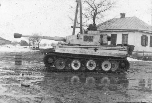 Tiger «424»