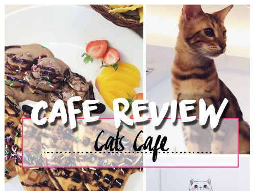 CAFE REVIEW : CATS CAFE, JOHOR