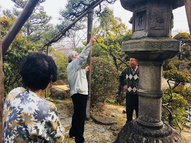 和庭園の灯籠移設の打ち合わせ