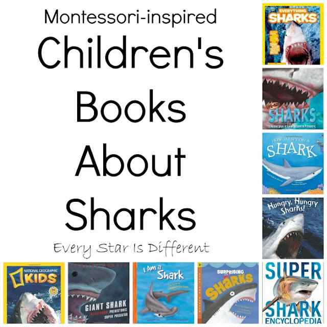 Montessori-inspired children's books about sharks