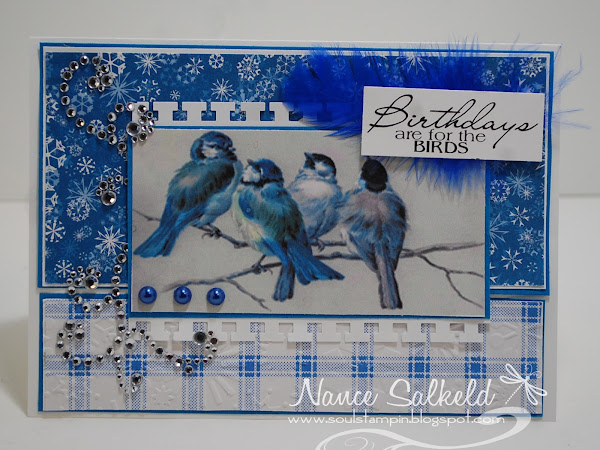 Blue Winter Bird-Day!