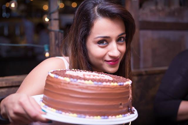 Trisha Krishnan Birthday Celebrations Stills