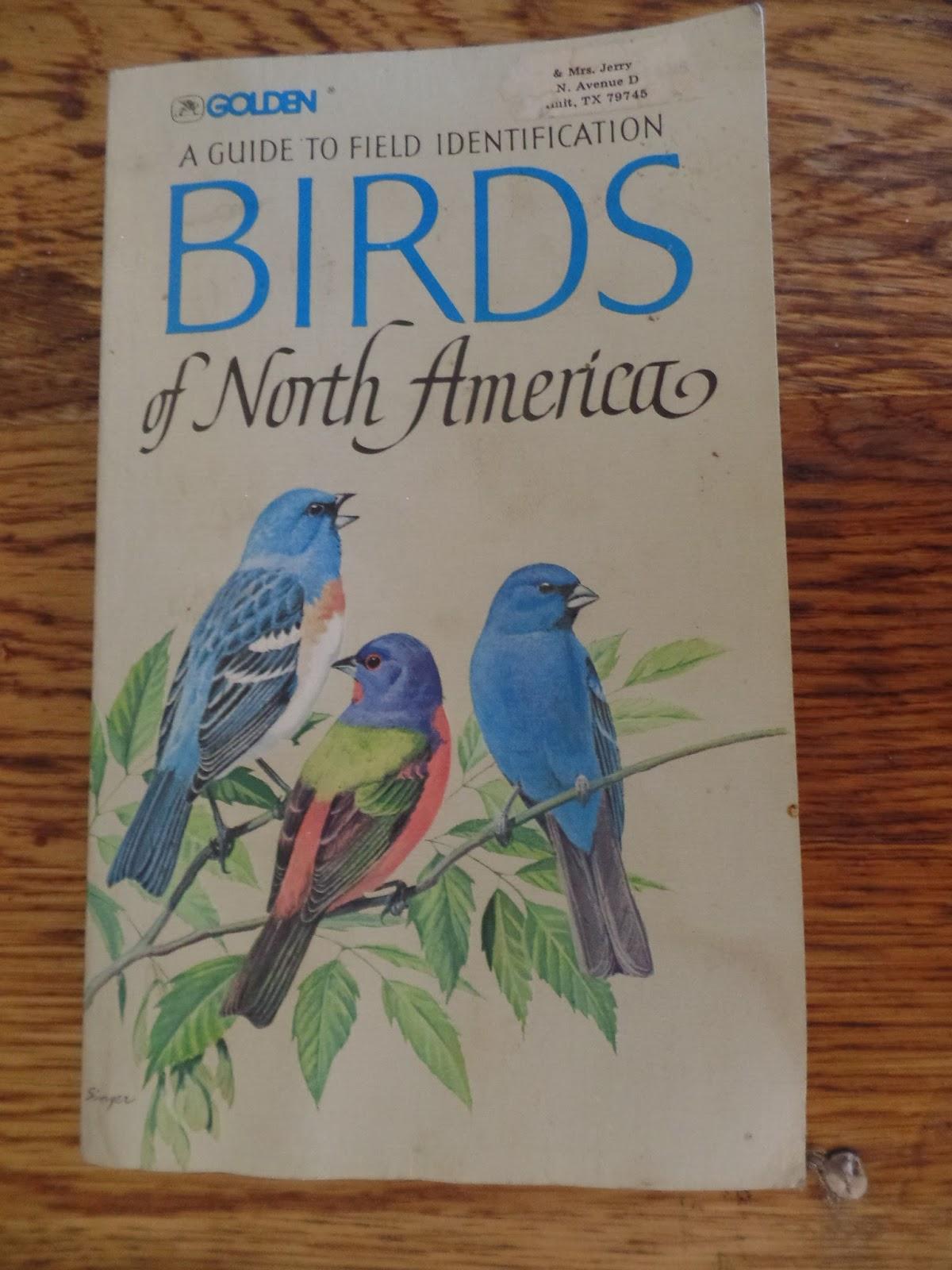Nature Study and Bird Watching - - iHomeschool Network