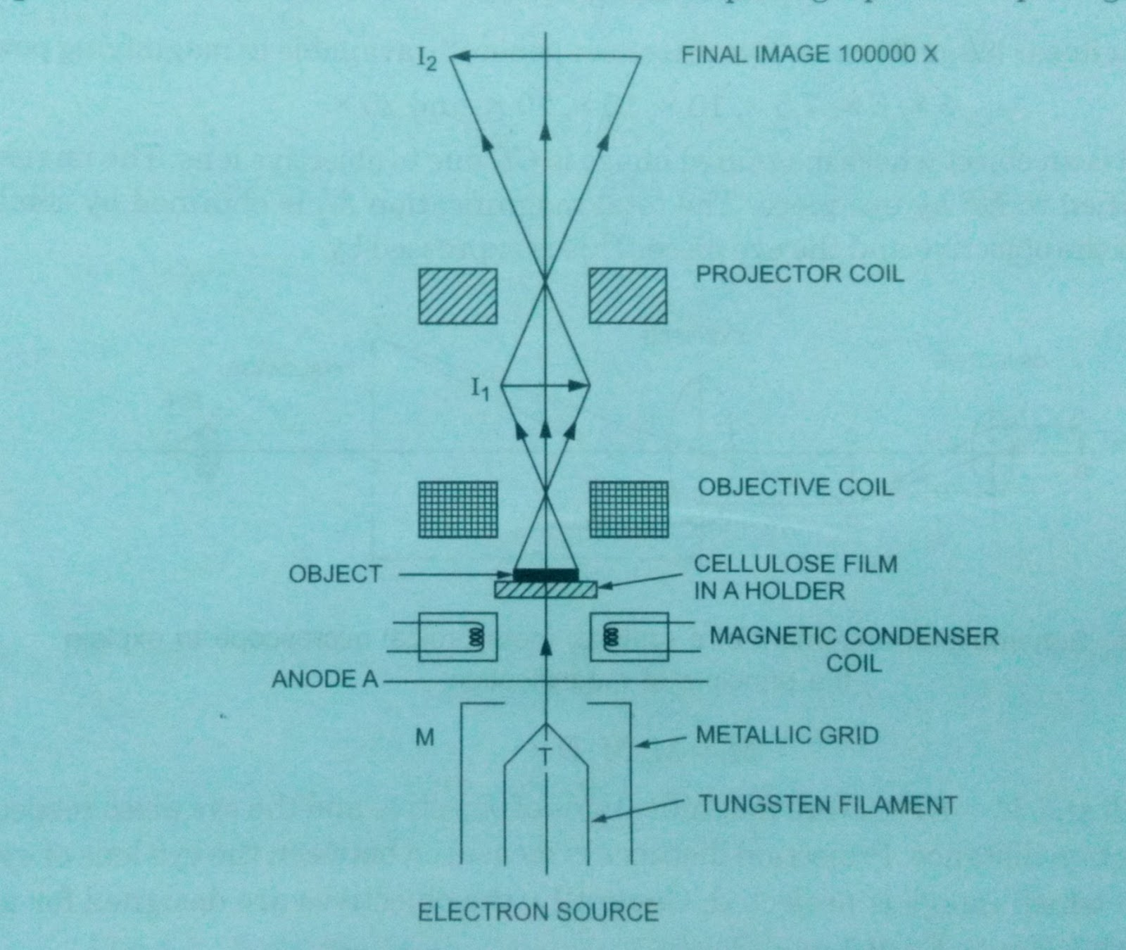 Microscopy optical and electron microscope with ray diagram layout of electron microscope ccuart Image collections