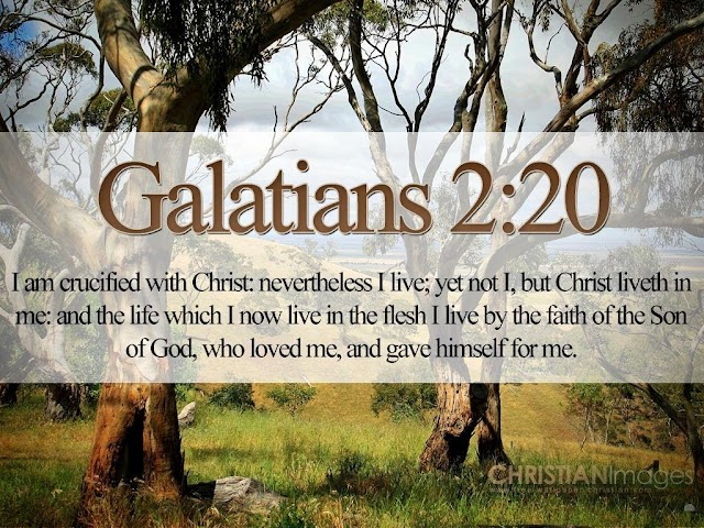 Galatian Bible Verse Wallpaper