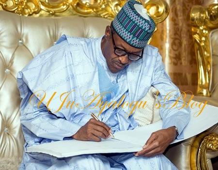 Buhari Appoints Rufai Abubakar As NIA DG