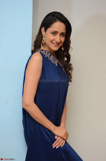 Pragya Jaiswal in beautiful Blue Gown Spicy Latest Pics February 2017 014.JPG