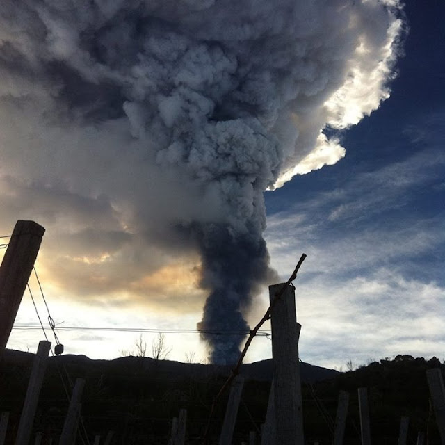 Smoke in vineyards on Mount Etna.