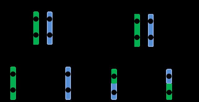 Hoan vi gen