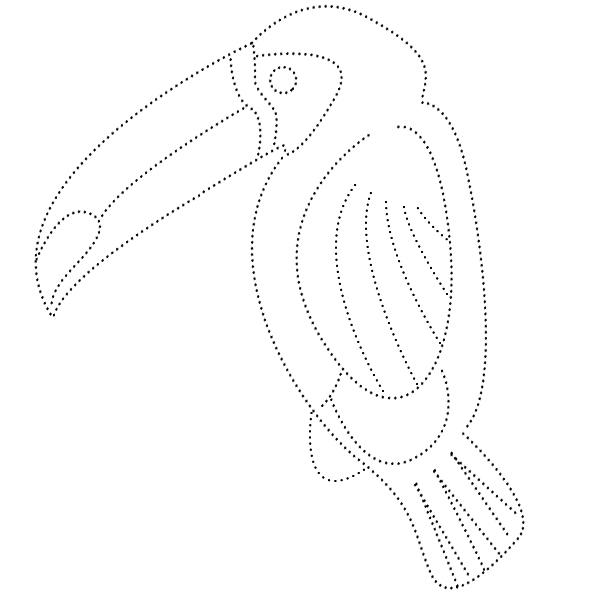 раскраска, обводилка, птица