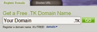 Type domain name you want to register