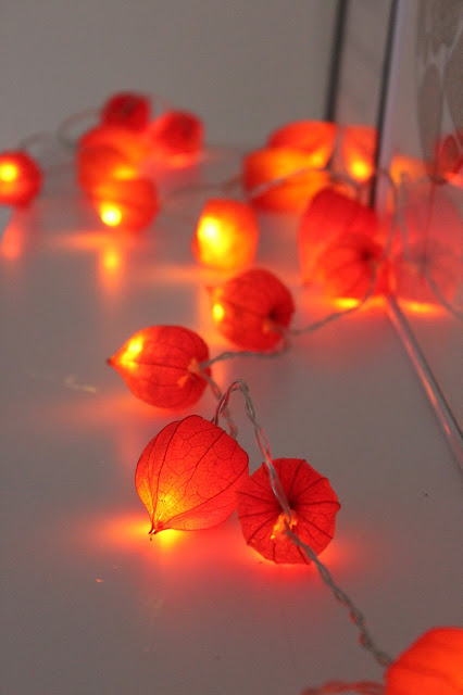 physalis lights