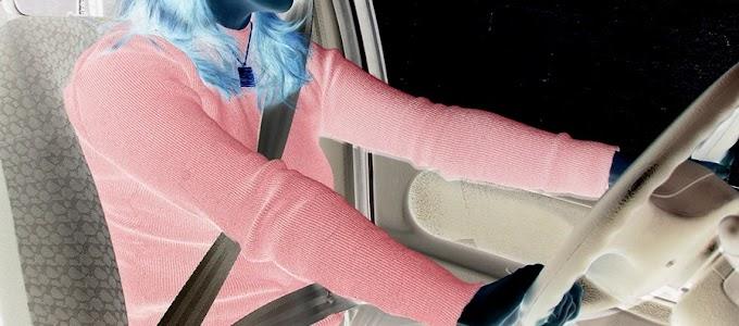 o local mais germinado em seu carro é mais sujo do que assento de toalete