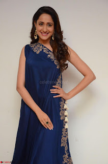 Pragya Jaiswal in beautiful Blue Gown Spicy Latest Pics February 2017 091.JPG
