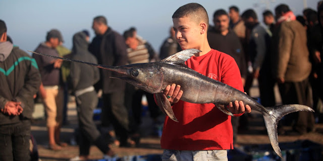 تجديد اتفاق الصيد البحري يلحق هزيمة أخرى بمنافسين المغرب