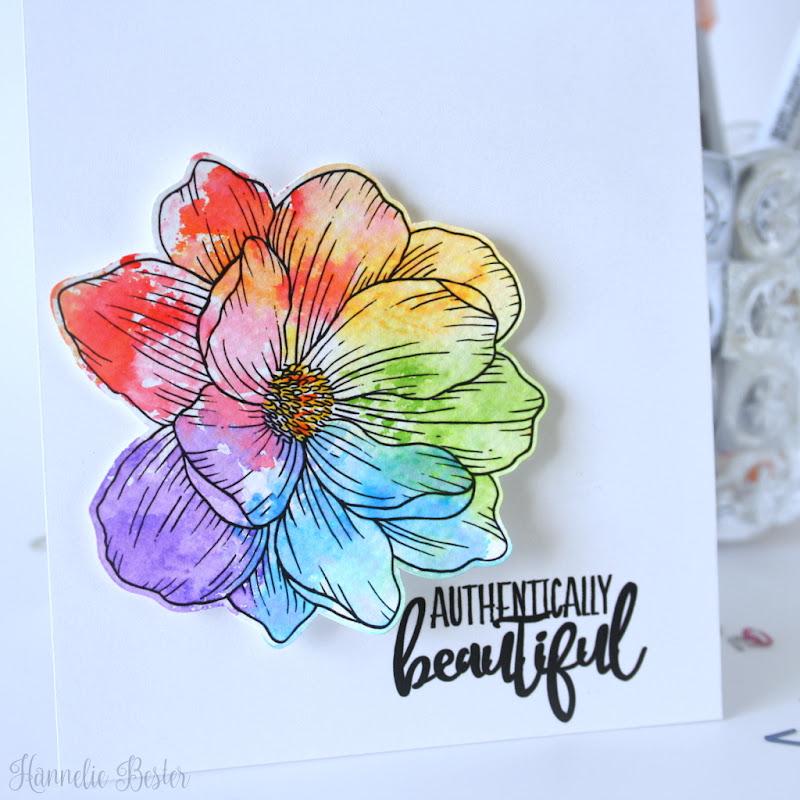 Graciellie Design : Magnolia Dreams