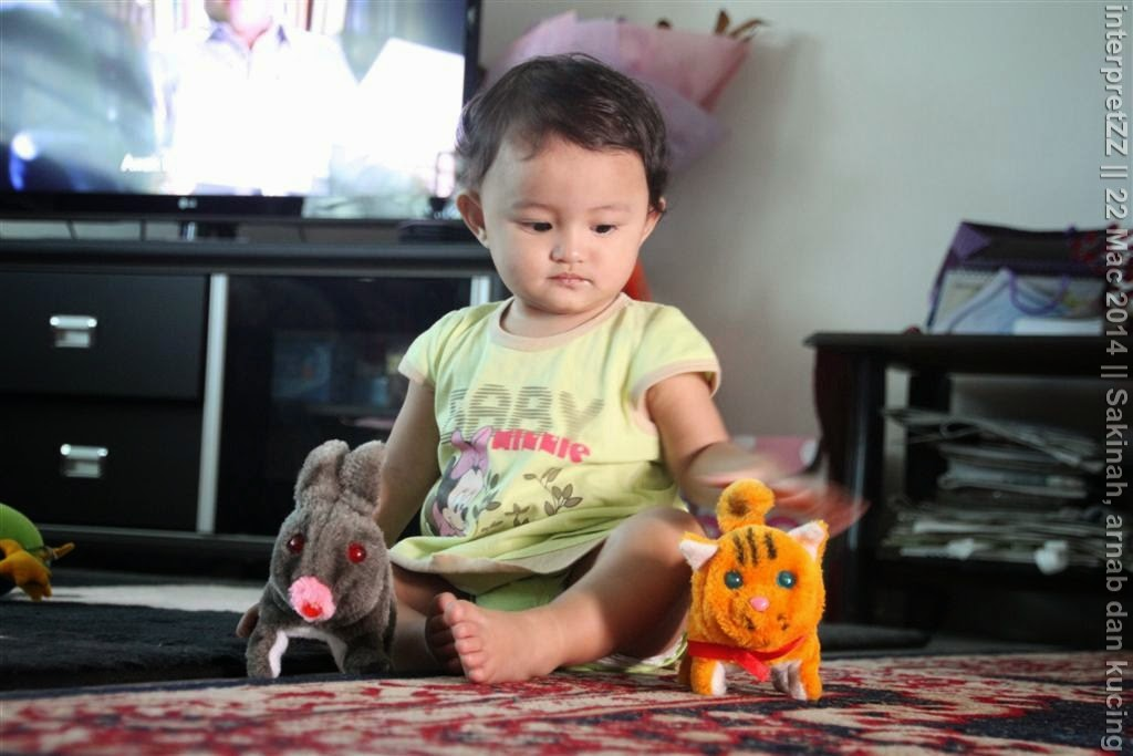 gambar Sakinah sedang bermain dengan permainan seekor arnab dan seekor kucing
