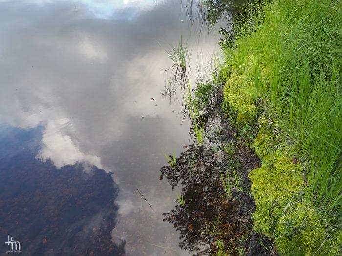 pilvien heijastus rantavedessä