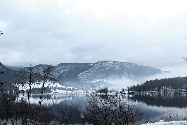 Lake Bohinj National Park Triglav Slovenia