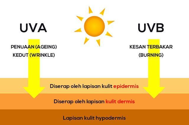 Efek bruk sinar ultra violet