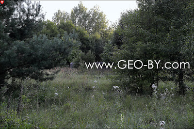 Полукапонир у деревни Славинка