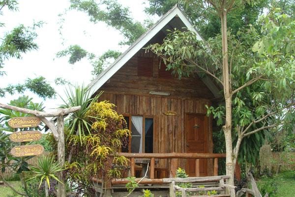 T Furniture Chiang Mai